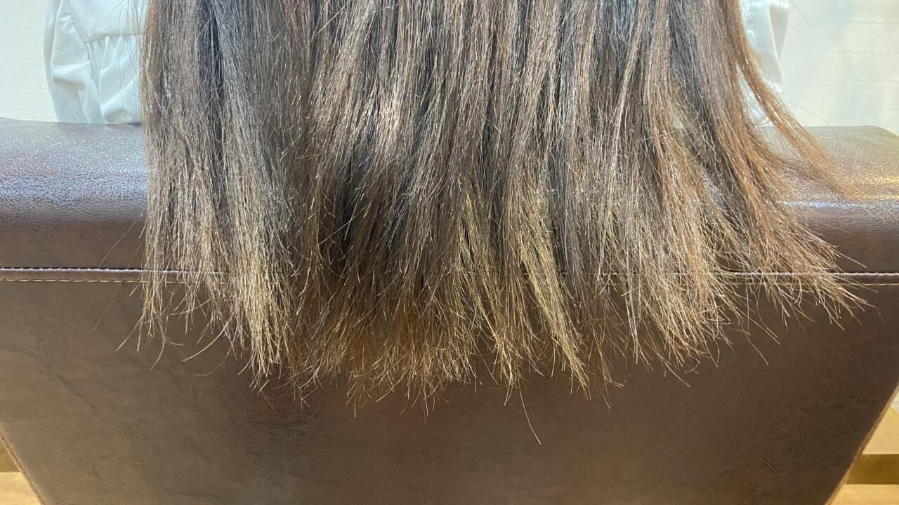 【縮毛矯正の失敗でクシも通らないほどギシギシに】ビビリ直しどこまでやる?